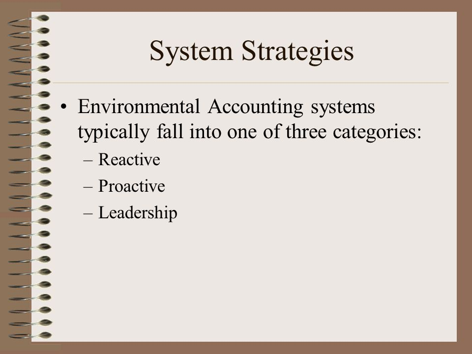 System Strategies Environmental Accounting systems typically fall into one of three categories: –Reactive –Proactive –Leadership