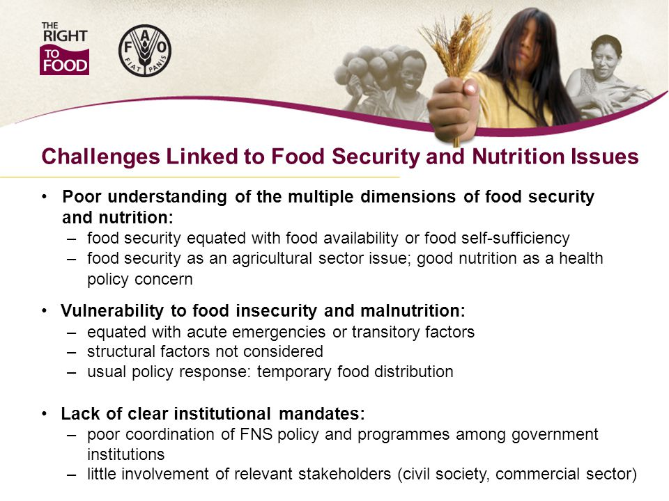 Challenges Linked to Food Security and Nutrition Issues Poor understanding of the multiple dimensions of food security and nutrition: – food security