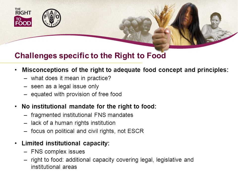 Challenges specific to the Right to Food Misconceptions of the right to adequate food concept and principles: – what does it mean in practice.