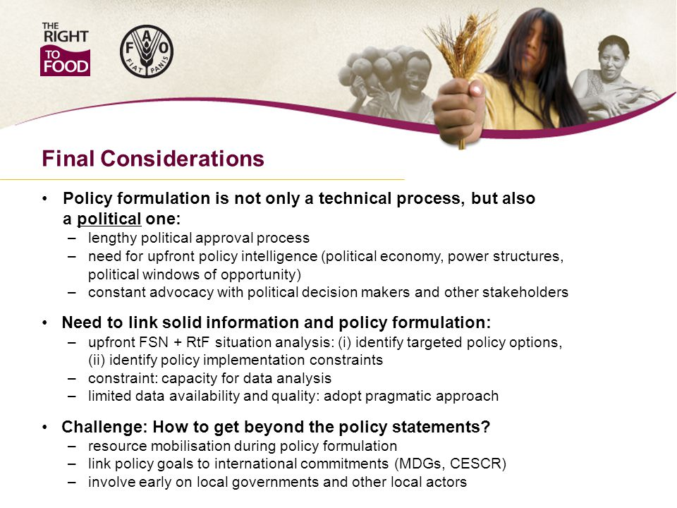 Final Considerations Policy formulation is not only a technical process, but also a political one: – lengthy political approval process – need for upfront policy intelligence (political economy, power structures, political windows of opportunity) – constant advocacy with political decision makers and other stakeholders Need to link solid information and policy formulation: – upfront FSN + RtF situation analysis: (i) identify targeted policy options, (ii) identify policy implementation constraints – constraint: capacity for data analysis – limited data availability and quality: adopt pragmatic approach Challenge: How to get beyond the policy statements.