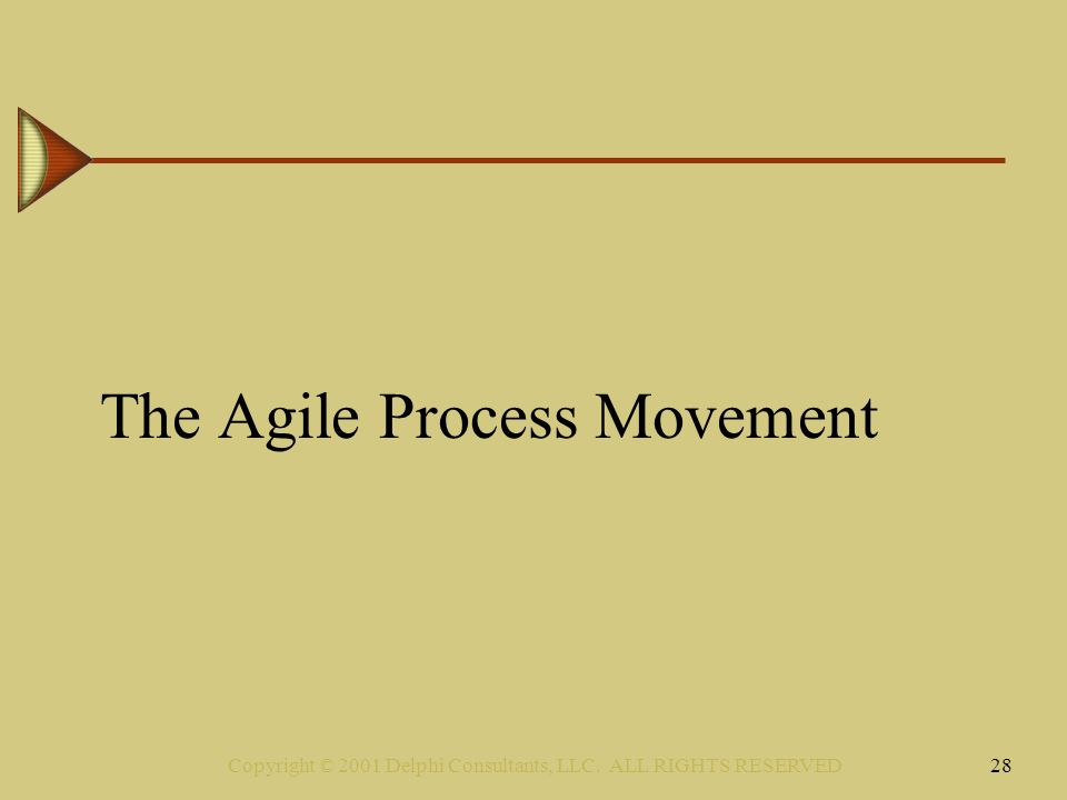 Copyright © 2001 Delphi Consultants, LLC. ALL RIGHTS RESERVED28 The Agile Process Movement