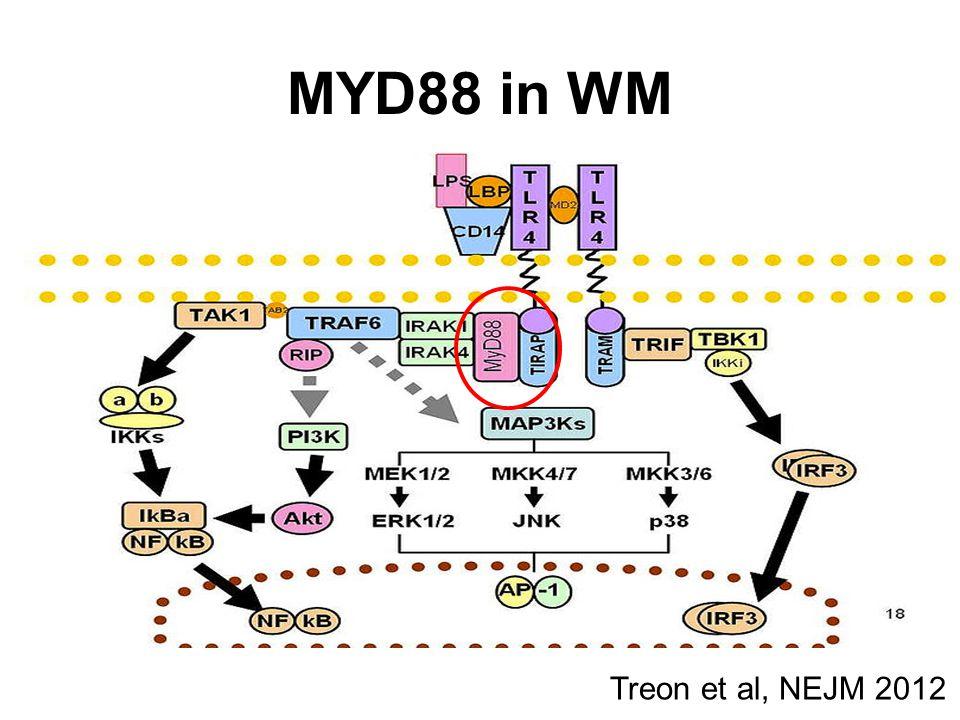 P =.009 P =.001 P =.004 Association between microRNAs and clinical prognostic features Roccaro et al.