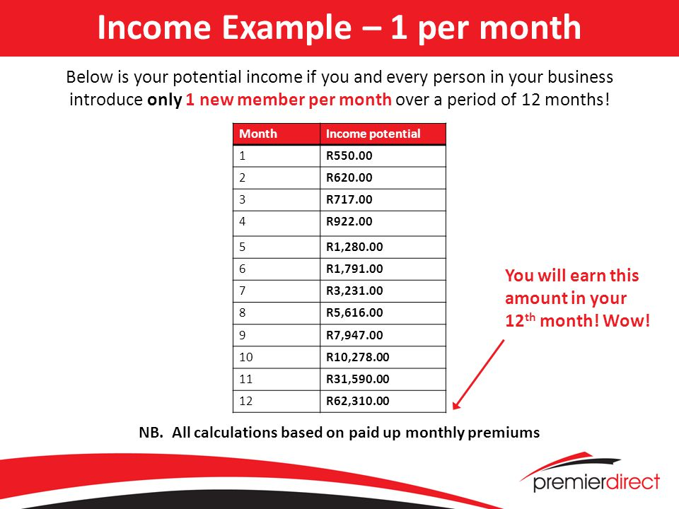 Income Example – 1 per month Below is your potential income if you and every person in your business introduce only 1 new member per month over a period of 12 months.