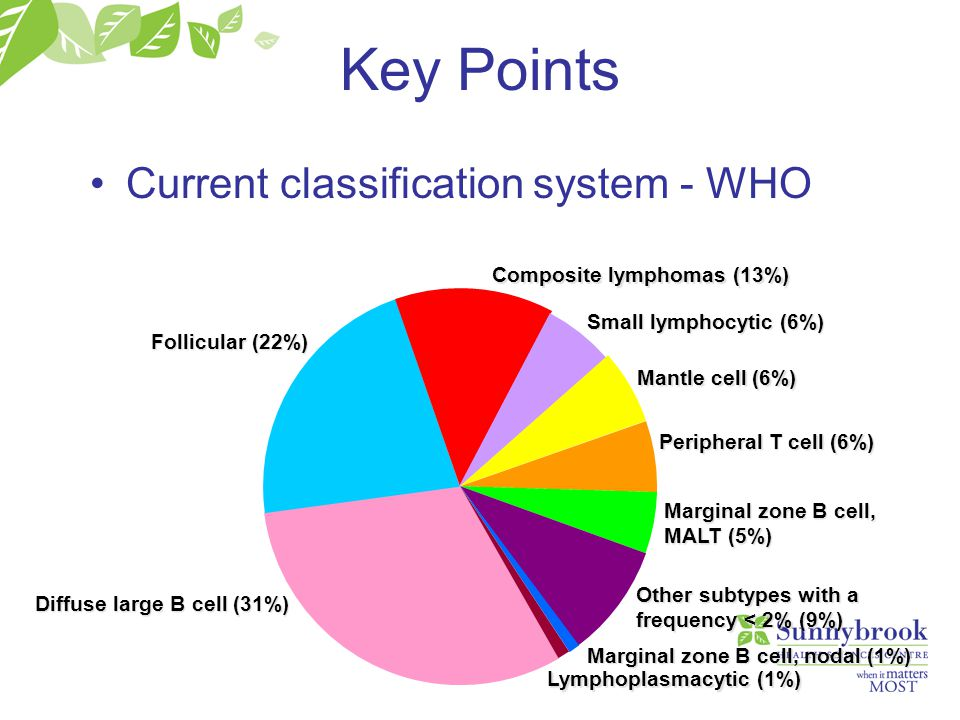 Key Points Current classification system - WHO Follicular (22%) Diffuse large B cell (31%) Small lymphocytic (6%) Mantle cell (6%) Peripheral T cell (