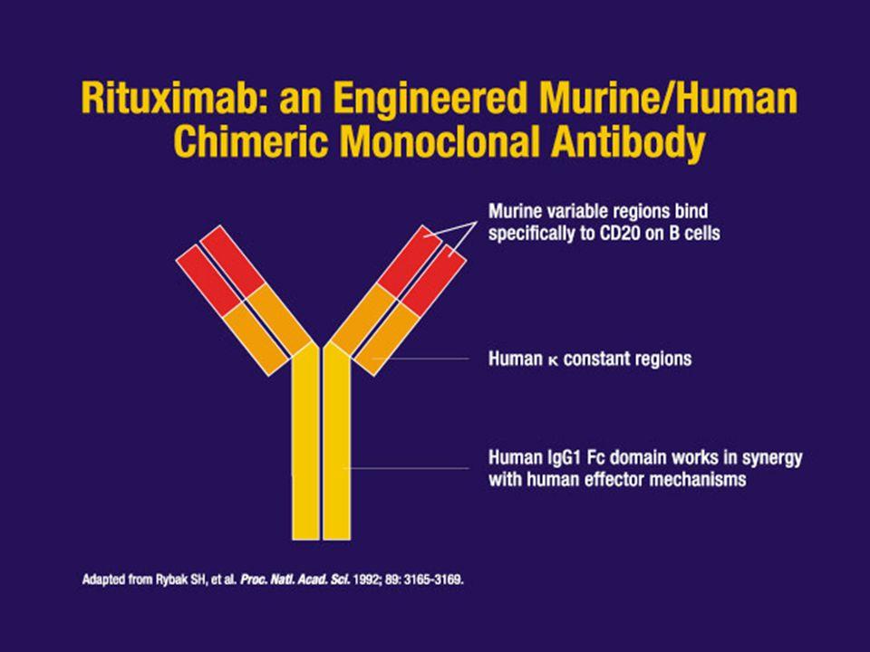 Nyman H et al, Modern Pathology 2009; 22 : 1094-1101 Hans algorithm Muris algorithm Nyman algorithm