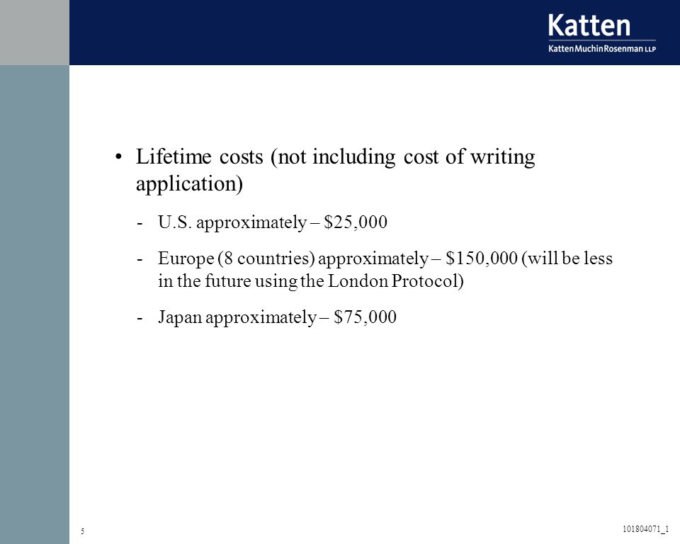 5 Lifetime costs (not including cost of writing application) -U.S.