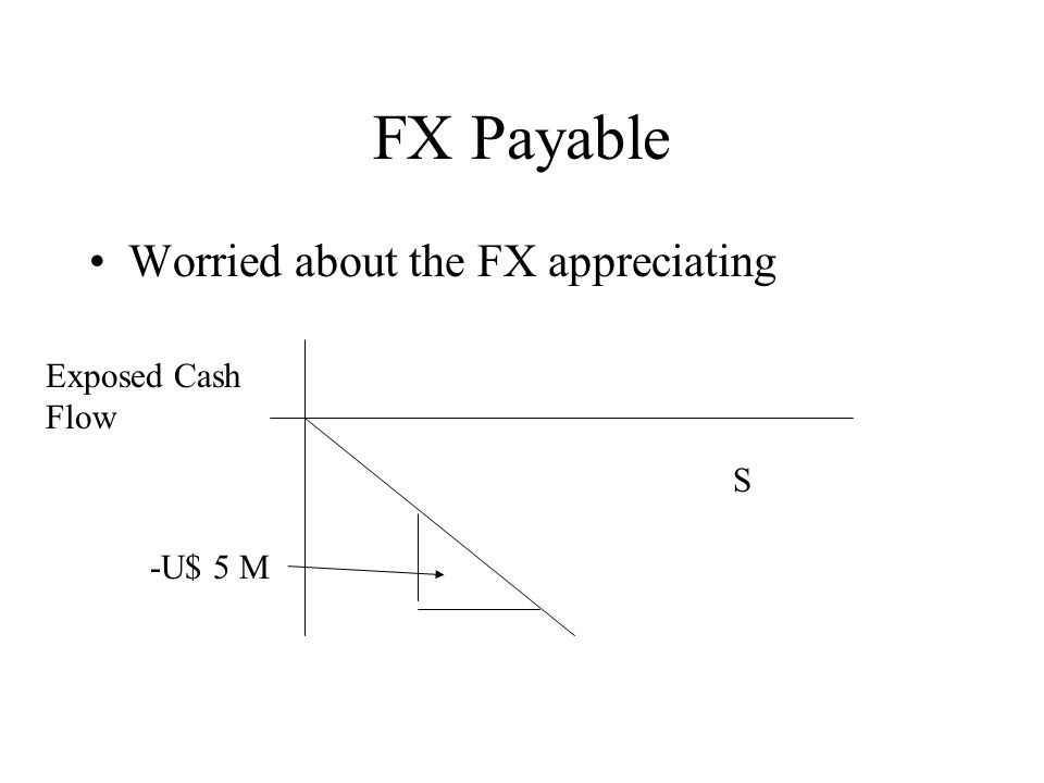 FX Payable Worried about the FX appreciating S -U$ 5 M Exposed Cash Flow
