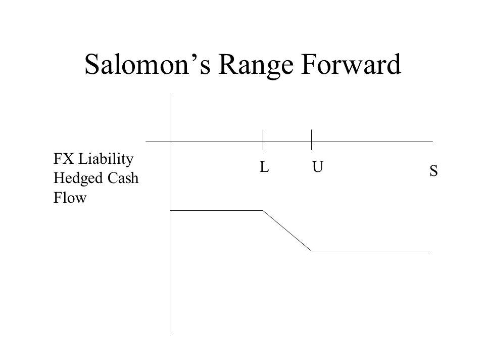 Salomon's Range Forward S LU FX Liability Hedged Cash Flow