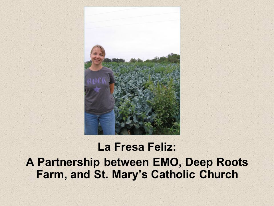 La Fresa Feliz: A Partnership between EMO, Deep Roots Farm, and St. Mary's Catholic Church