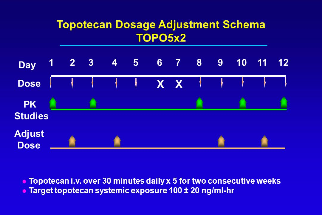 Topotecan Dosage Adjustment Schema TOPO5x2 l Topotecan i.v. over 30 minutes daily x 5 for two consecutive weeks l Target topotecan systemic exposure 1