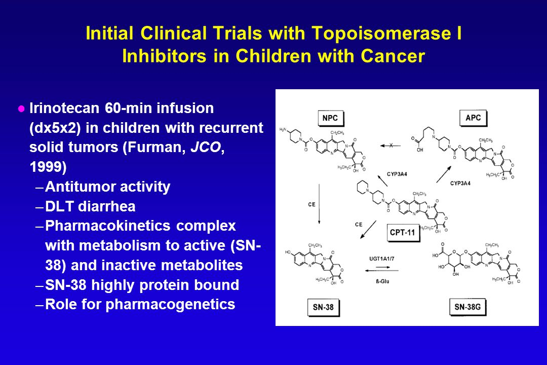 Initial Clinical Trials with Topoisomerase I Inhibitors in Children with Cancer l Irinotecan 60-min infusion (dx5x2) in children with recurrent solid tumors (Furman, JCO, 1999) –Antitumor activity –DLT diarrhea –Pharmacokinetics complex with metabolism to active (SN- 38) and inactive metabolites –SN-38 highly protein bound –Role for pharmacogenetics