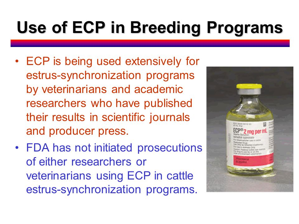 Use of ECP in Breeding Programs ECP is being used extensively for estrus-synchronization programs by veterinarians and academic researchers who have published their results in scientific journals and producer press.
