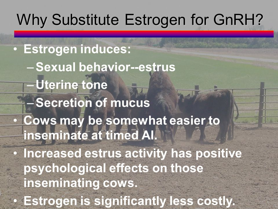 Why Substitute Estrogen for GnRH.