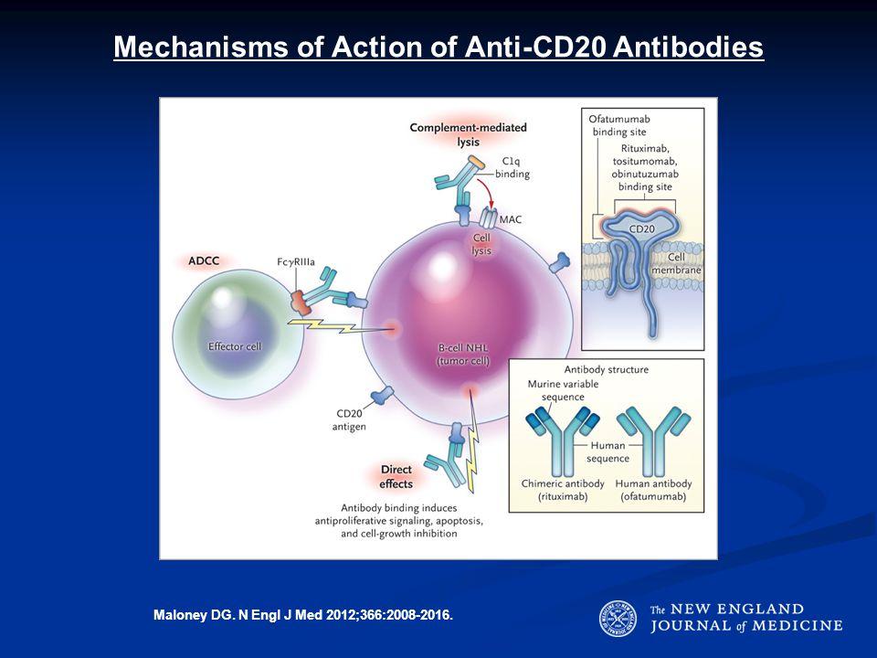 Mechanisms of Action of Anti-CD20 Antibodies Maloney DG. N Engl J Med 2012;366:2008-2016.