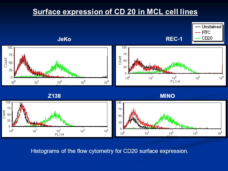 JeKo REC-1 Z138MINO Surface expression of CD 20 in MCL cell lines Histograms of the flow cytometry for CD20 surface expression.
