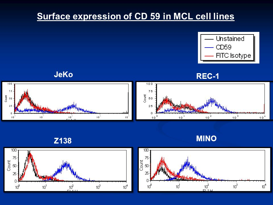 JeKo REC-1 Z138 MINO Surface expression of CD 59 in MCL cell lines