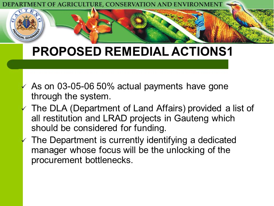 PROPOSED REMEDIAL ACTIONS1 As on 03-05-06 50% actual payments have gone through the system. The DLA (Department of Land Affairs) provided a list of al