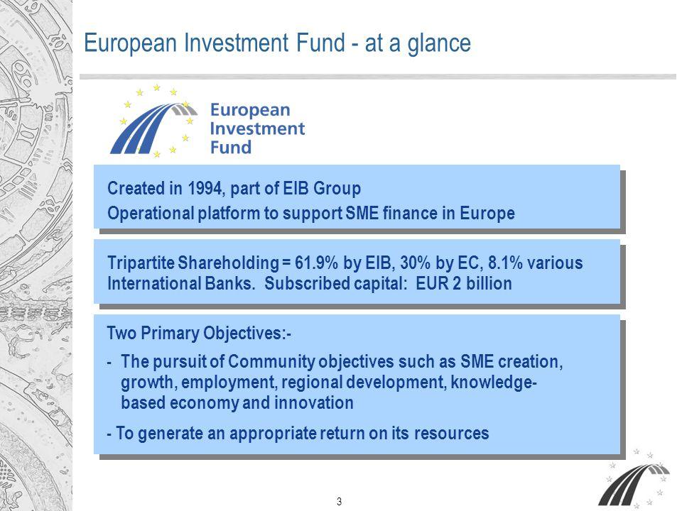 4 Total portfolio in EURNumber of intermediaries VENTURE CAPITAL € 3.1bn (€369m signed in 2005) 217 Venture Capital funds GUARANTEES € 9.3bn (€1.685 bn signed in 2005) 165 Banks/Guarantee institutions = EUR 12.4 billion total portfolio under management European Investment Fund Portfolio – Year End 2005