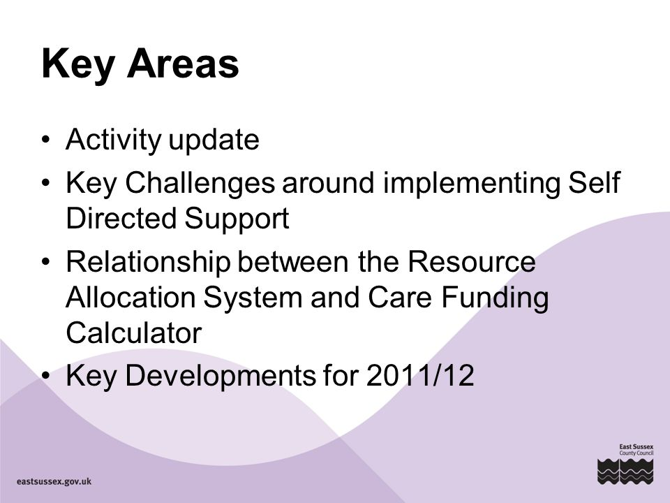 Key Areas Activity update Key Challenges around implementing Self Directed Support Relationship between the Resource Allocation System and Care Funding Calculator Key Developments for 2011/12