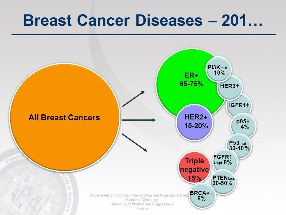 All Breast Cancers ER+ 65-75% HER2+ 15-20% Triple negative 15% HER3+ IGFR1+ p95+ 4% P53 mut 30-40 % FGFR1 Ampl 8% PTEN loss 30-50% PI3K mut 10% BRCA M