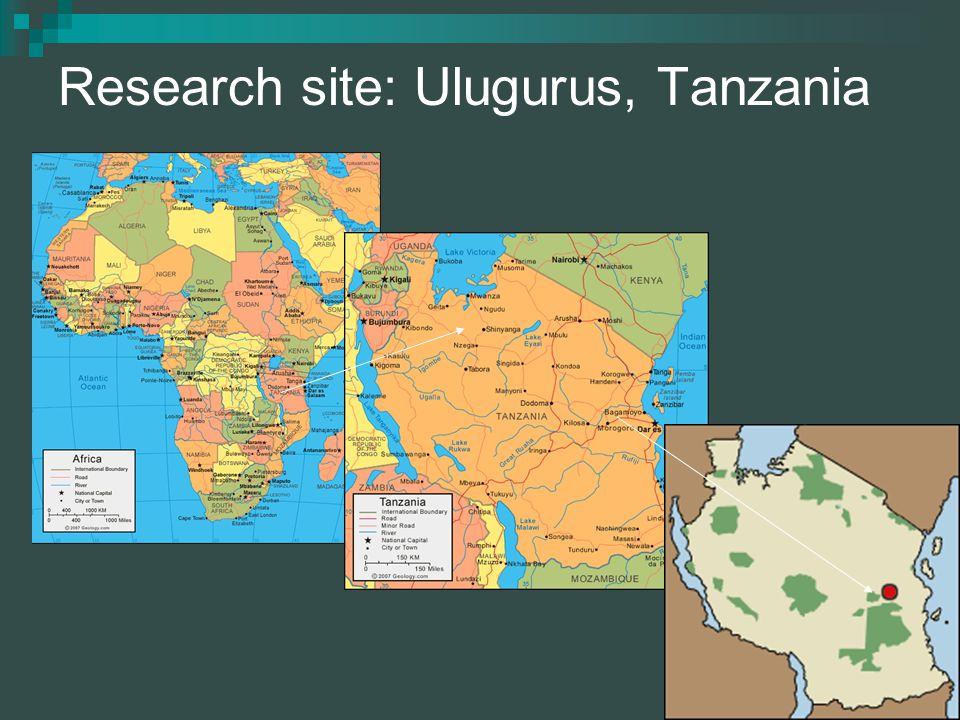 3 3 Research site: Ulugurus, Tanzania