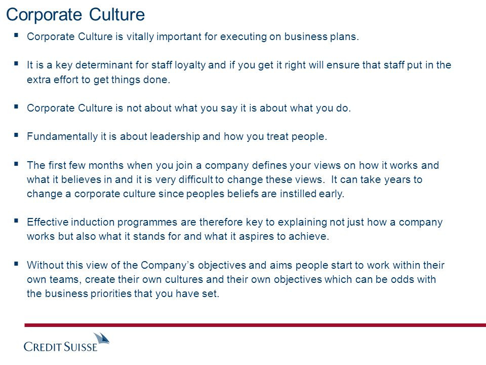 Corporate Culture  Corporate Culture is vitally important for executing on business plans.