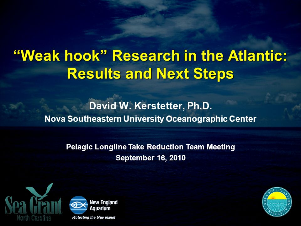 Weak hook Research in the Atlantic: Results and Next Steps David W.