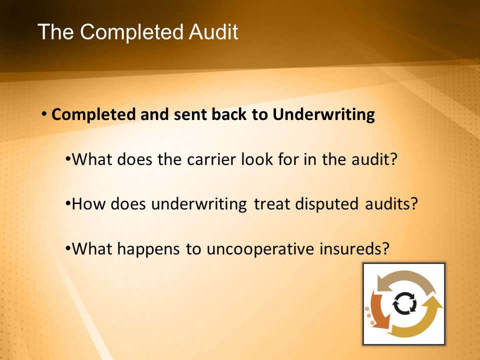 The Completed Audit Completed and sent back to Underwriting What does the carrier look for in the audit.
