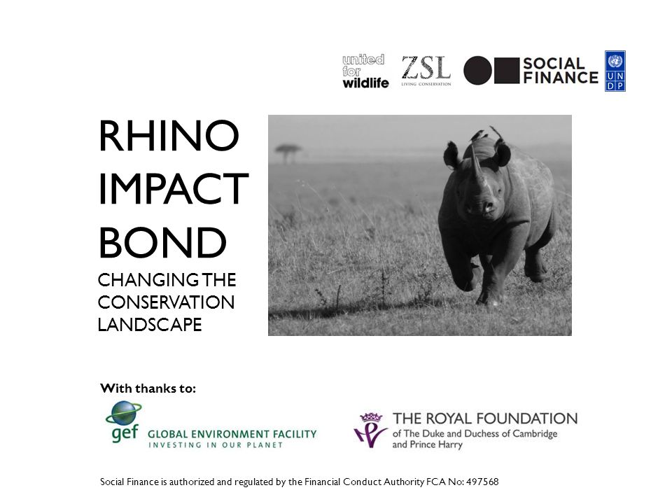 RHINO IMPACT BOND CHANGING THE CONSERVATION LANDSCAPE Social Finance is authorized and regulated by the Financial Conduct Authority FCA No: 497568 With thanks to: