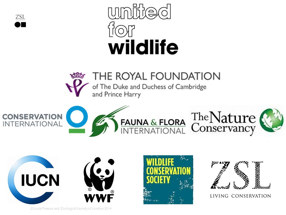 ©Social Finance and Zoological Society of London 2014