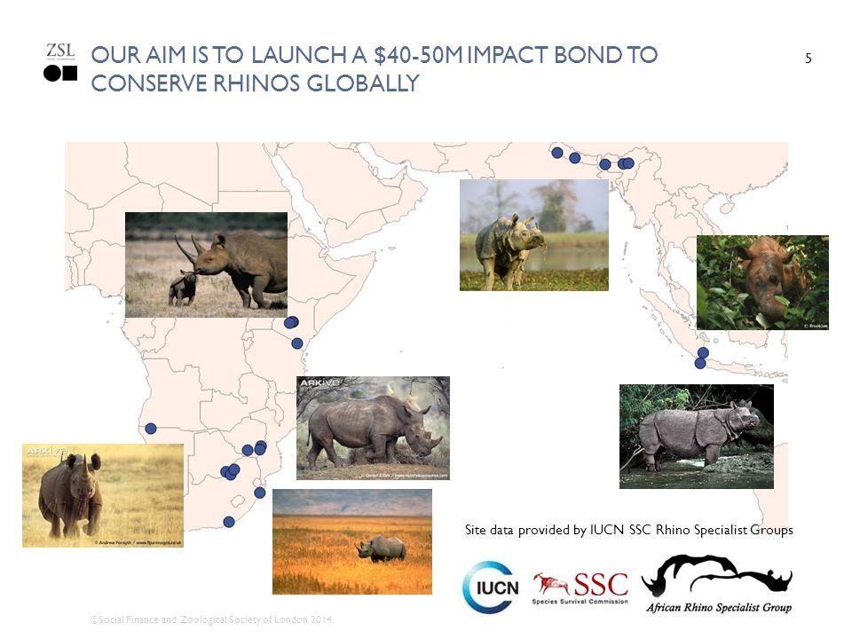 OUR AIM IS TO LAUNCH A $40-50M IMPACT BOND TO CONSERVE RHINOS GLOBALLY 5 Site data provided by IUCN SSC Rhino Specialist Groups