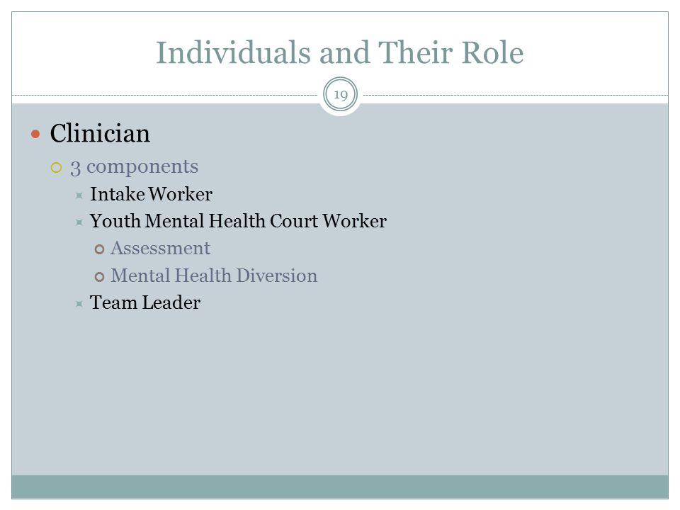 Individuals and Their Role Clinician  3 components  Intake Worker  Youth Mental Health Court Worker Assessment Mental Health Diversion  Team Leader 19