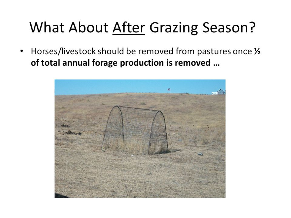 What About After Grazing Season? Horses/livestock should be removed from pastures once ½ of total annual forage production is removed …