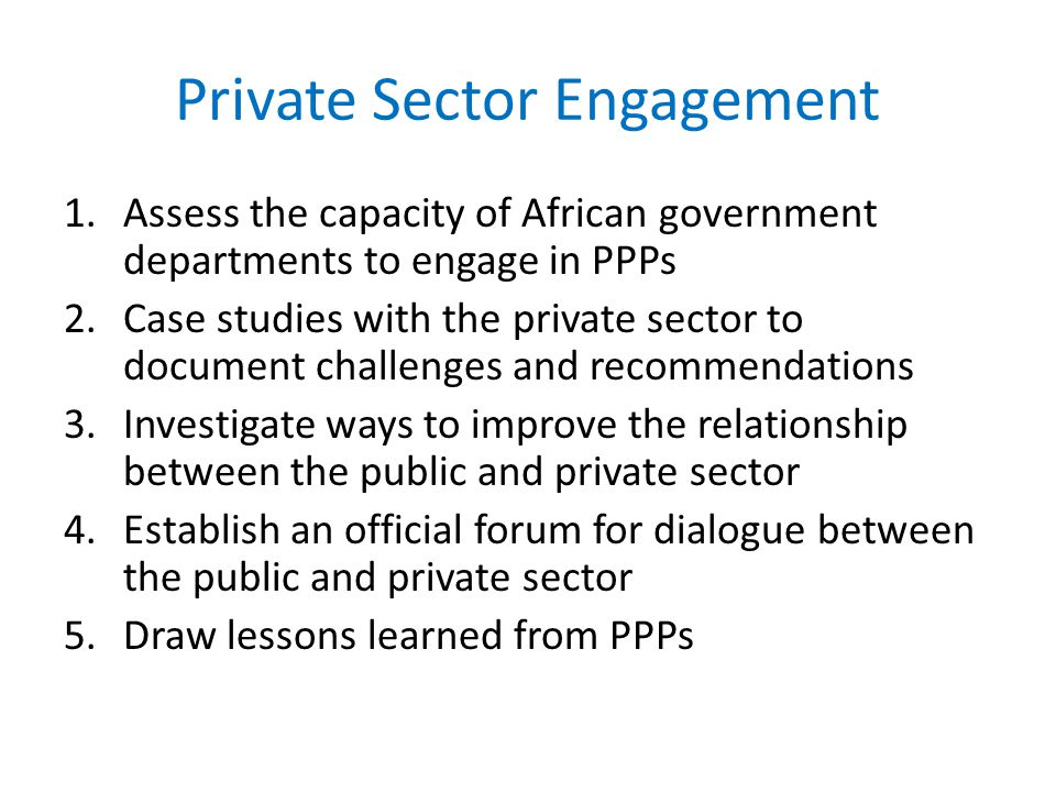Private Sector Engagement 1.Assess the capacity of African government departments to engage in PPPs 2.Case studies with the private sector to document challenges and recommendations 3.Investigate ways to improve the relationship between the public and private sector 4.Establish an official forum for dialogue between the public and private sector 5.Draw lessons learned from PPPs