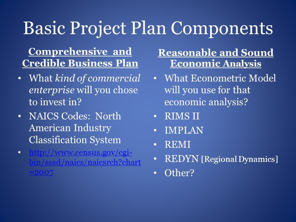 Basic Project Plan Components Comprehensive and Credible Business Plan What kind of commercial enterprise will you chose to invest in.