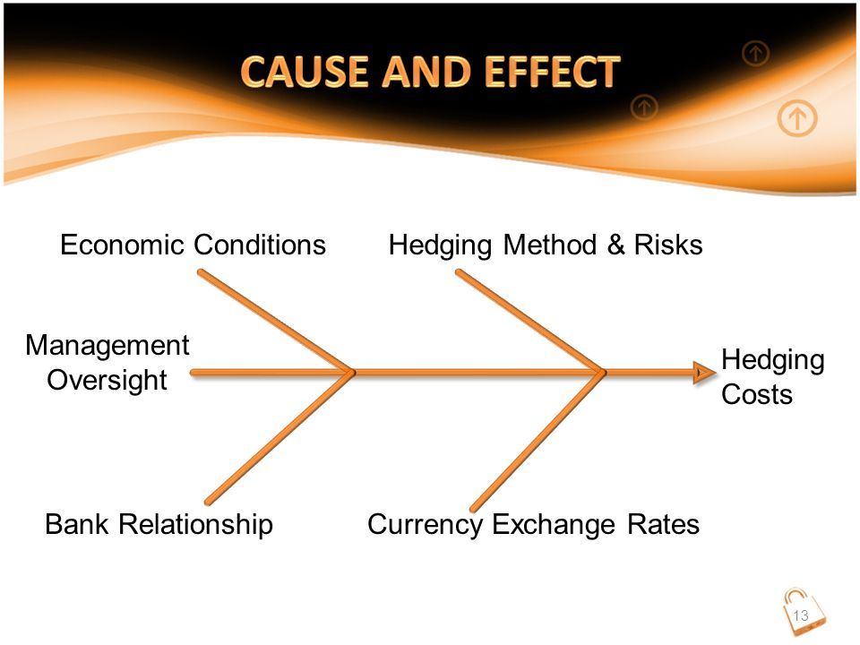 Hedging Costs Economic Conditions Currency Exchange Rates Hedging Method & Risks Bank Relationship Management Oversight 13