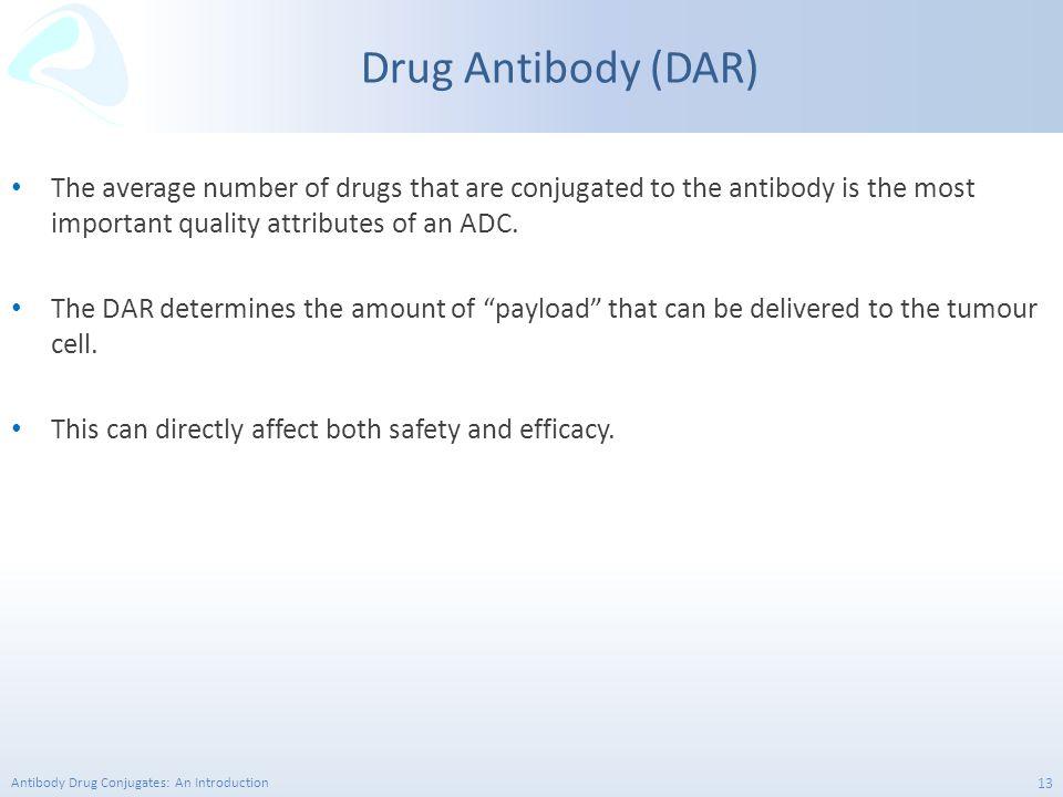 Antibody Drug Conjugates: An Introduction 13 Drug Antibody (DAR) The average number of drugs that are conjugated to the antibody is the most important