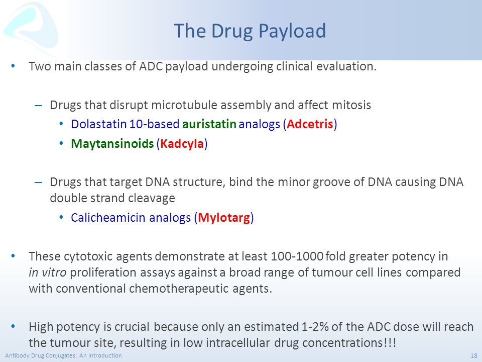 Antibody Drug Conjugates: An Introduction 18 Two main classes of ADC payload undergoing clinical evaluation. – Drugs that disrupt microtubule assembly