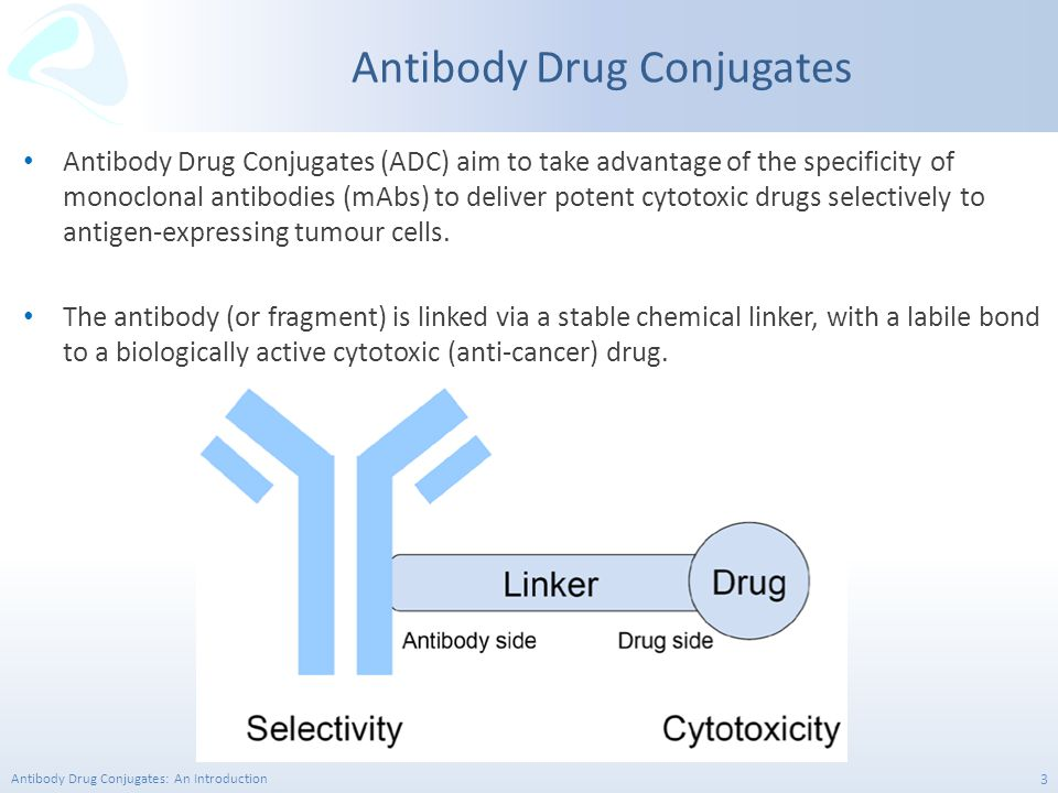 Antibody Drug Conjugates: An Introduction 24 Site-Specific Conjugation Next generation ADC's are focused on homogeneous products derived via site-specific conjugation.