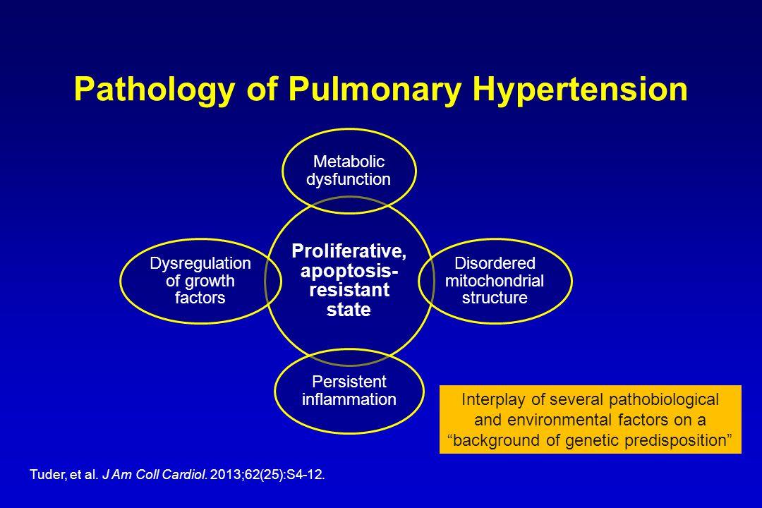 Pathology of Pulmonary Hypertension Tuder, et al. J Am Coll Cardiol.