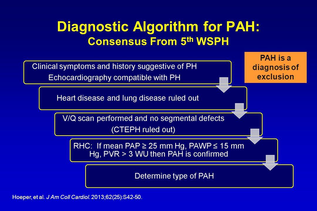 Diagnostic Algorithm for PAH: Consensus From 5 th WSPH Hoeper, et al.