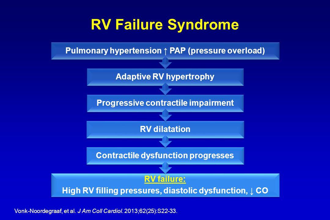 RV Failure Syndrome Vonk-Noordegraaf, et al. J Am Coll Cardiol.
