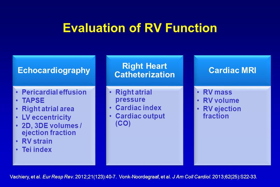 Evaluation of RV Function Vachiery, et al. Eur Resp Rev.