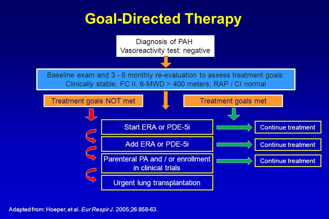 Diagnosis of PAH Vasoreactivity test: negative Baseline exam and 3 - 6 monthly re-evaluation to assess treatment goals: Clinically stable, FC II, 6-MWD > 400 meters, RAP / CI normal Baseline exam and 3 - 6 monthly re-evaluation to assess treatment goals: Clinically stable, FC II, 6-MWD > 400 meters, RAP / CI normal Treatment goals NOT met Treatment goals met Start ERA or PDE-5i Add ERA or PDE-5i Parenteral PA and / or enrollment in clinical trials Urgent lung transplantation Continue treatment Goal-Directed Therapy Adapted from: Hoeper, et al.