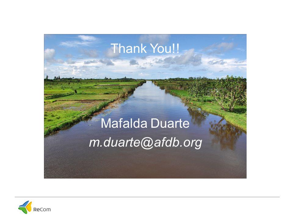 Thank You!! Mafalda Duarte m.duarte@afdb.org