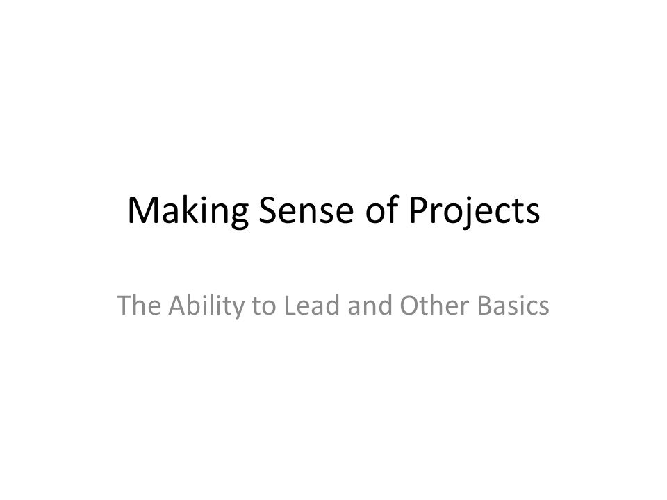 Making Sense of Projects The Ability to Lead and Other Basics