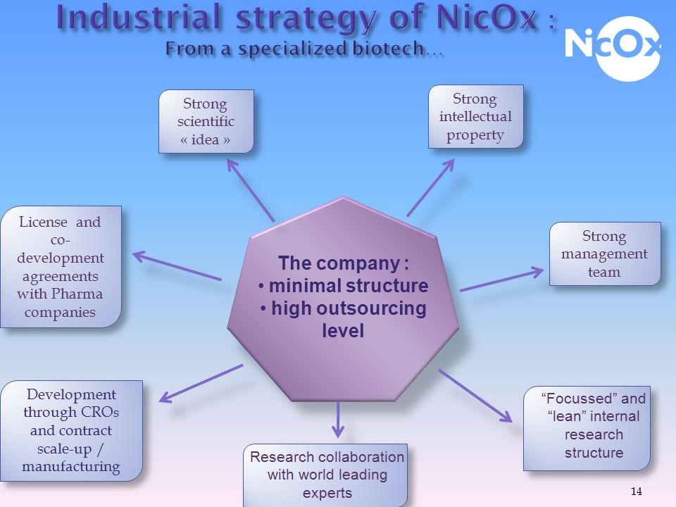 INDUSTRIAL STRATEGY OF NICOX AND PARTNERSHIP 13