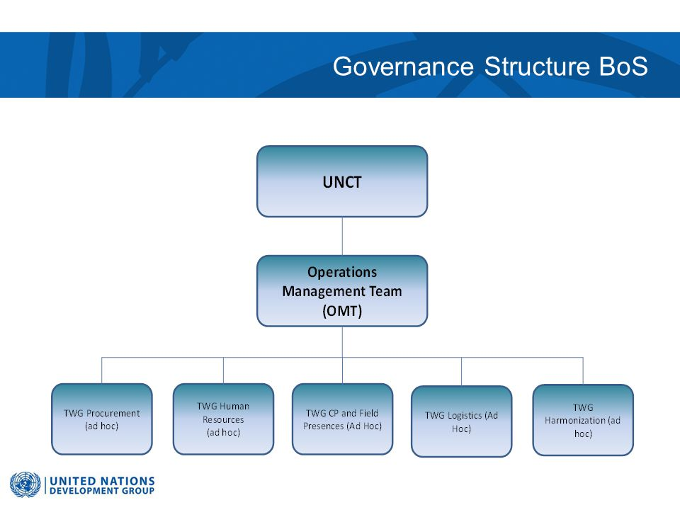 Governance Structure BoS