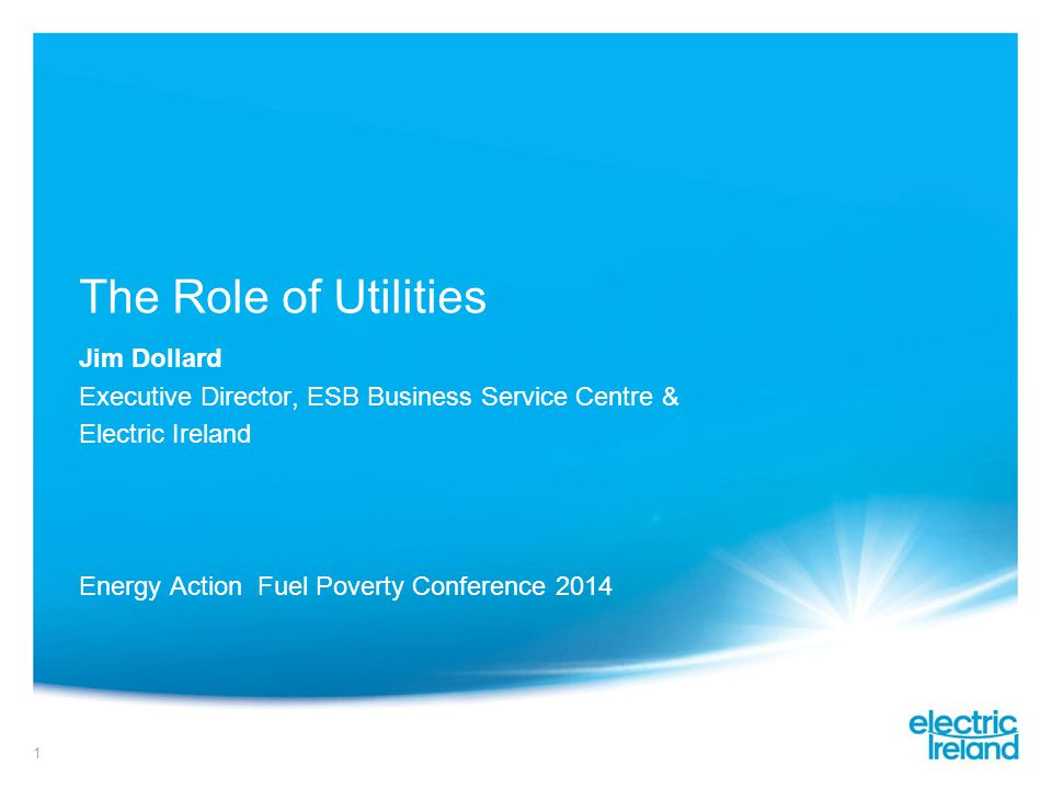 1 The Role of Utilities Jim Dollard Executive Director, ESB Business Service Centre & Electric Ireland Energy Action Fuel Poverty Conference 2014