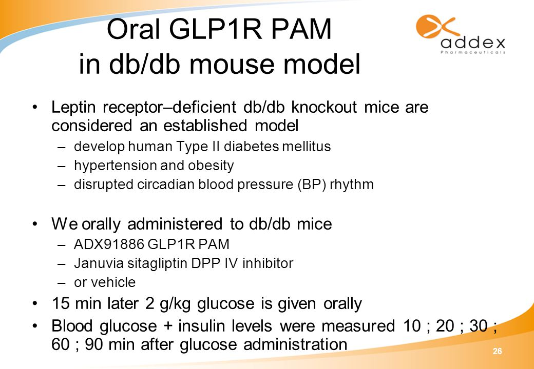 26 Oral GLP1R PAM in db/db mouse model Leptin receptor–deficient db/db knockout mice are considered an established model –develop human Type II diabet